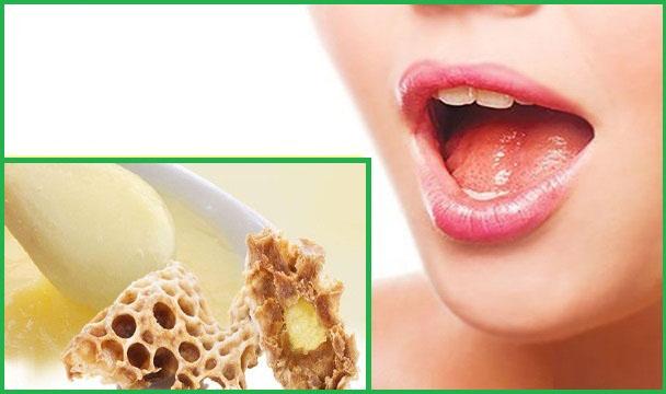 Có thể phân biệt sữa ong chúa thật giả bằng vị giác