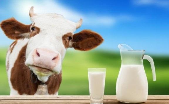 Sữa dành riêng cho bé sinh non