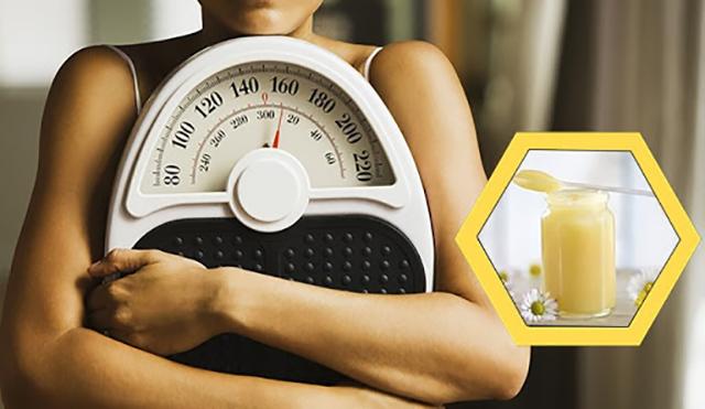 uống sữa ong chúa có tăng cân không?