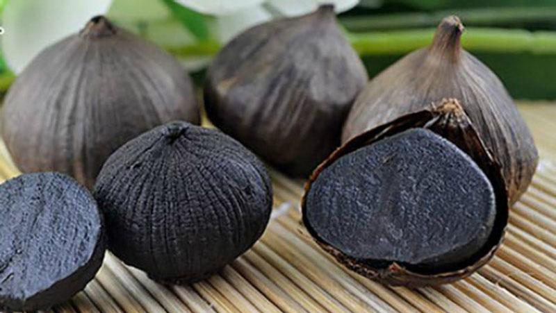 Tỏi đen nổi tiếng với khả năng chống khuẩn