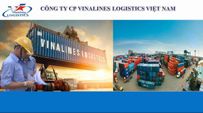 Không chỉ là một công ty vận tải Sài Gòn lớn mà hiện nay Vinalines Logistics còn là một trong 8 công ty vận tải đường dài