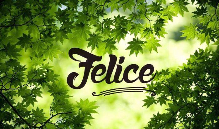 Shop mỹ phẩm Felice là một trong những shop mỹ phẩm authentic uy tín