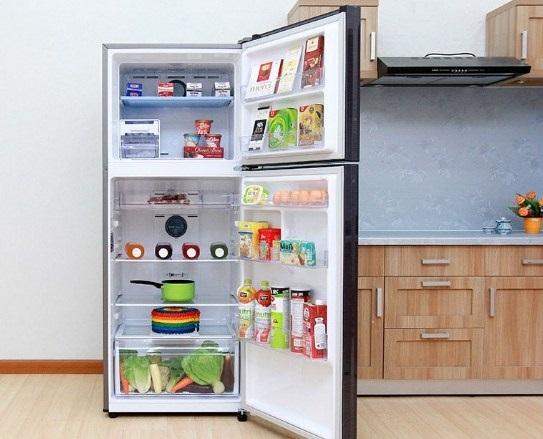 Tủ Lạnh Inverter Samsung RT20K300ASE