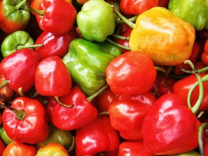 Ớt chuông chứa nhiều vitamin A, B6 cực kỳ tốt cho sức khỏe