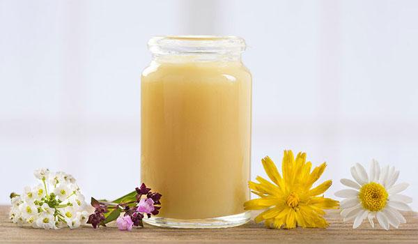 Những Điều Cần Biết Về Sữa Ong Chúa Pháp