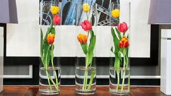 Hoa Tulip được đặt trong phòng khách mang đầy những ý nghĩa